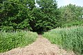 Kissena Park td 36 - Stewart RR Trail.jpg