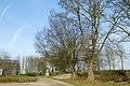 Knoteiken en haagbeuk bij hoeve Den Doeyer te Zwalm - 372604 - onroerenderfgoed.jpg