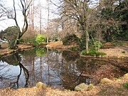 Koishikawa Botanical Gardens, Tokyo - pond.jpg