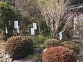 Kokubunji-Manyou-Shokubutsuen.jpg