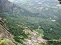 Kollengode South, Kerala, India - panoramio (37).jpg