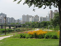 Korea-Daegu-Shincheon River-01.jpg