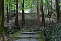 Kozanji Kyoto Kyoto08s5s4592.jpg