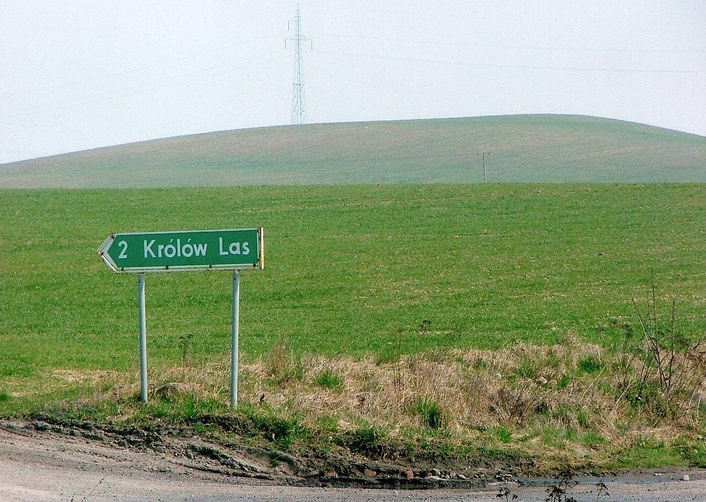1024px-Krolow_Las%2C_2007r.jpg