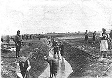 Men and women digging in a water-filled ditch