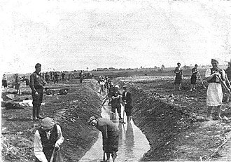 Lublin Reservation - Image: Krychów forced labour camp 1940 (Krowie Bagno)