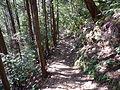 Kumano Kodo Dainichigoe World heritage57.JPG