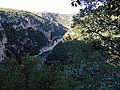 L'Ardèche, ses gorges.jpg