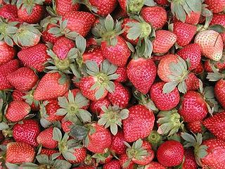 La Trinidad strawberries.jpg