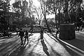 La sombra de Alda (15682561133).jpg