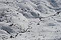 Lake Albina, Main Range Track, Kosciuszko National Park 21.jpg