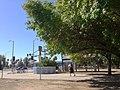 Lake Balboa, Los Angeles, CA, USA - panoramio (40).jpg