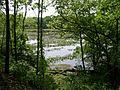 Lake George P5200040.JPG