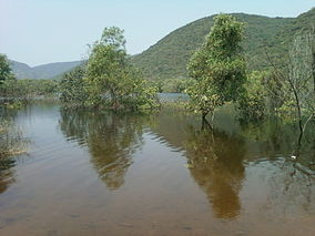 Lake in midst of Eastern ghats of AP INDIA.jpg