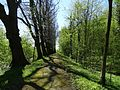 Landschaftsschutzgebiet Burg Kniphausen.JPG