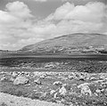 Landschap langs de weg van Ramallah naar Nablus, Bestanddeelnr 255-5562.jpg
