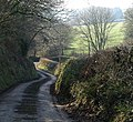 Lane below Smallridge - geograph.org.uk - 700838.jpg
