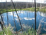 Large Birch Creek Pingo - panoramio.jpg