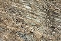 Layers of sedimentary rock formed on the earth's surface. 5308.jpg
