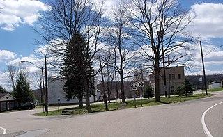 Leesville, Ohio Village in Ohio, United States