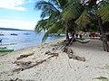 Libertad, Kaputian, Island Garden City of Samal, Davao del Norte, Philippines - panoramio (6).jpg
