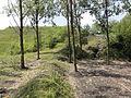 Ligny-lès-Aire - Terril n° 32, Transvaal 2 Sud (03).JPG