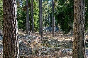 Stenkyrka - Image: Lilla Bjärs gravfält Stenkyrka 1