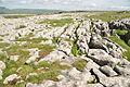 Limestone pavement east of Ingleborough (7783).jpg