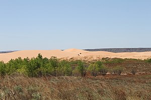 A photo of sand dunes in Little Sahara State Park