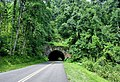 Little Switzerland Tunnel @ Blue Ridge Parkway.jpg