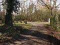 Littlewick Common - geograph.org.uk - 1716587.jpg