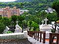 Lixing New Town Birdview from Dazhi Roman Catholic Cemetery 20120701a.jpg