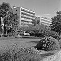 Locarno Twee hotels en een tuin, Bestanddeelnr 254-4785.jpg