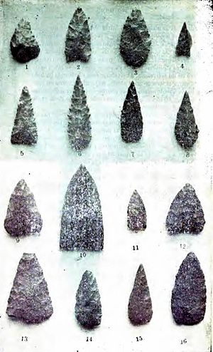 Promaucae - Tools used by Promaucaes, found in Pichilemu in 1908.