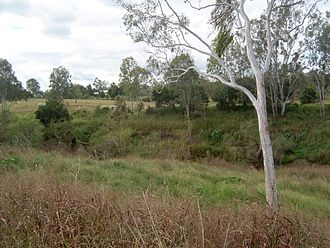 Lockyer Valley - Lower Lockyer Creek, 2011