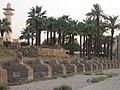 Luxor Temple (2428165697).jpg