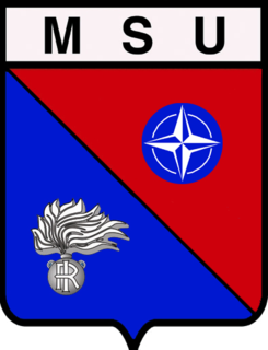 Multinational Specialized Unit
