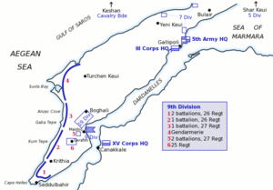Fifth Army (Ottoman Empire) - Disposition of the 5th Army at Gallipoli
