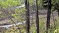 Marais du lac Larouche et route 222 - panoramio.jpg