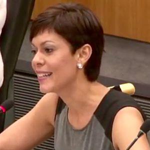 María de Lourdes Santiago - Maria de Lourdes Santiago at the UN, on the Decolonization Committee, Colonial Case of Puerto Rico (2016)