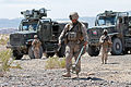 Marines conduct IED training during Exercise Desert Scimitar 130503-M-XZ121-113.jpg