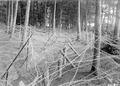 Massive Stacheldrahthindernisse im Niederwald - CH-BAR - 3238617.tif