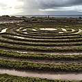 Maze (15529251971).jpg