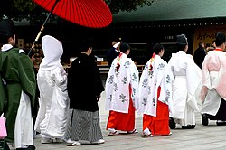 Meiji-jingu wedding procession - P1000847