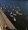 Metaphysical Ennui, Kingston upon Thames. - panoramio.jpg
