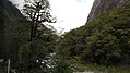 Milford Sound Hwy, South Island (483007) (9482208053).jpg