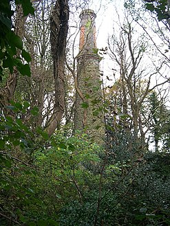 Mine Chimney at Wheal Eliza Consols - geograph.org.uk - 77232.jpg