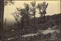 Mission Ridge, crest of - NARA - 533384.tif