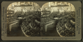 Missouri fruit exhibit in Palace of Horticulture, by Whiting View Company.png