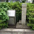 Mizonokuchi 06b7983v.jpg
